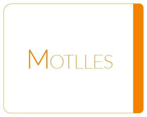 Motlles