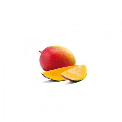 Polpa crua de mango congelada (1kg), Garnier